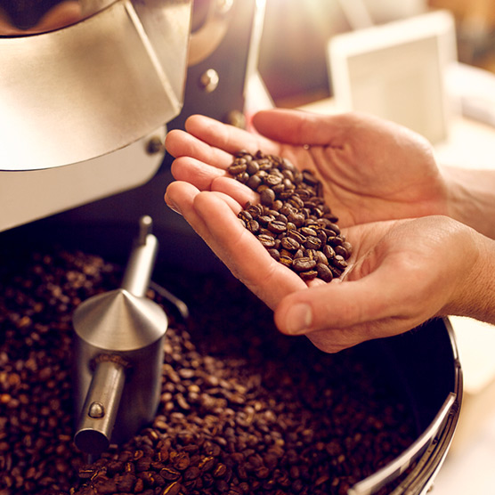 Person Holding Coffee Beans